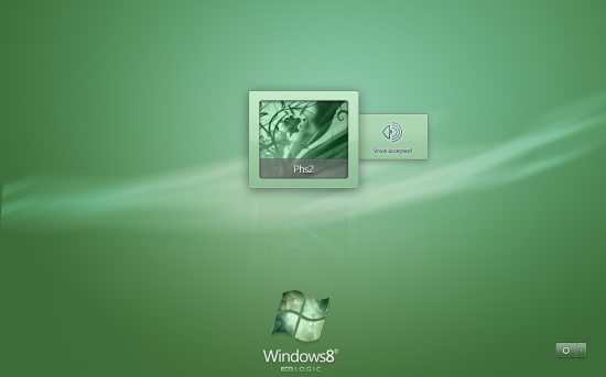 windows 8 ecologic