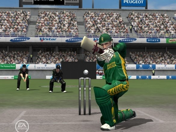 Best Cricket Games for Windows PC 2013