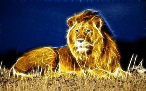Lion Roar Iphone 5 Wallpaper
