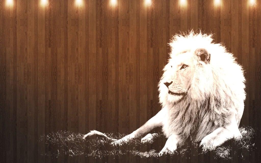 os x lion wallpaper - photo #23