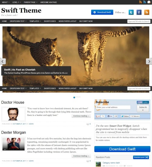 Swift Theme