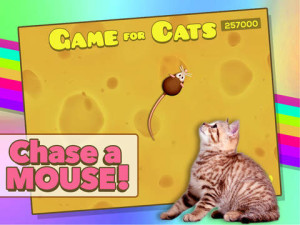 Game for C for iPad - Cat play